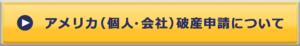Webボタン_アメリカ(個人・会社)破産申請について_160717